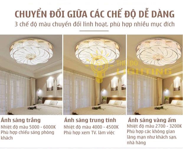 đèn ốp trần giá rẻ