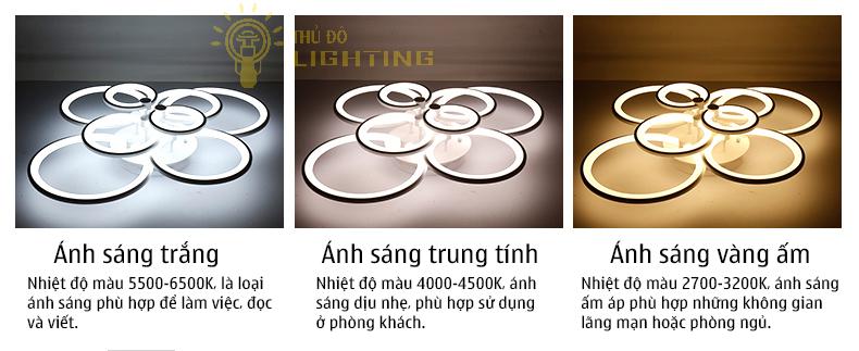 Đèn mâm vòng tròn
